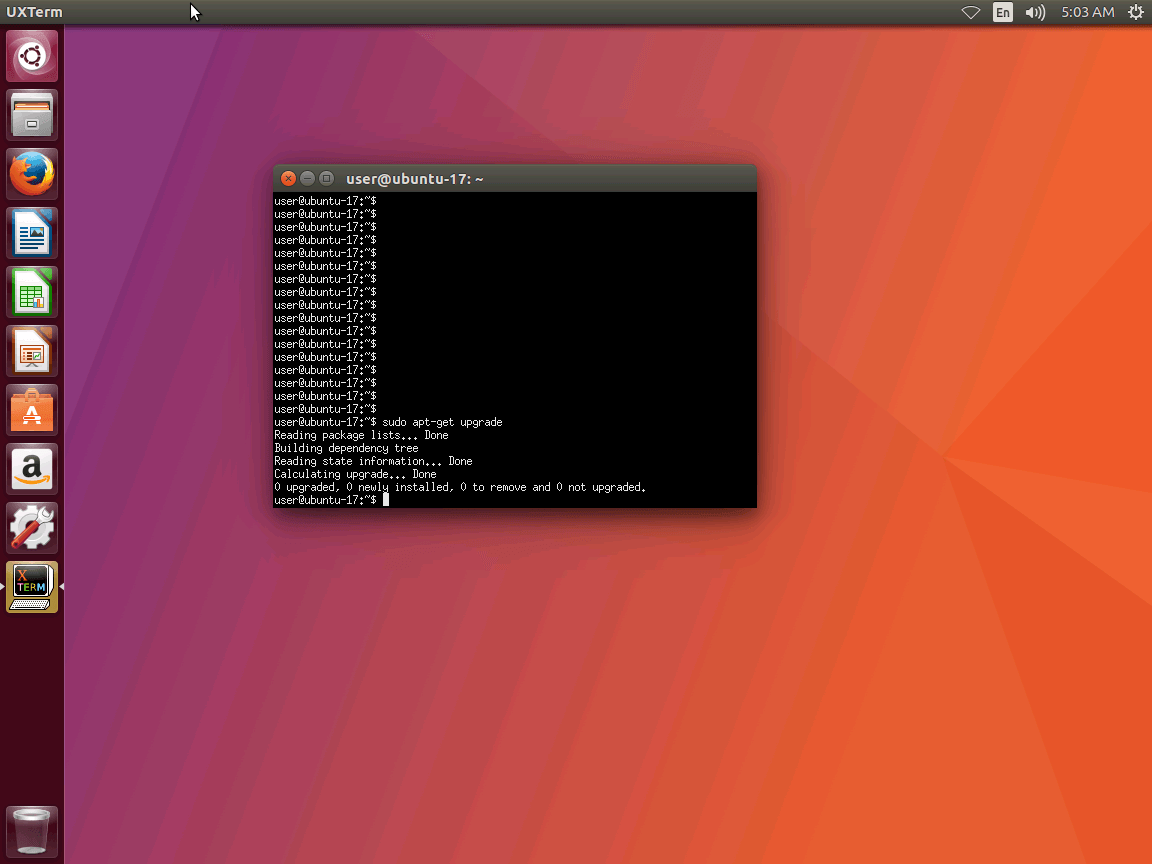 upgraded to Ubuntu on 17.04