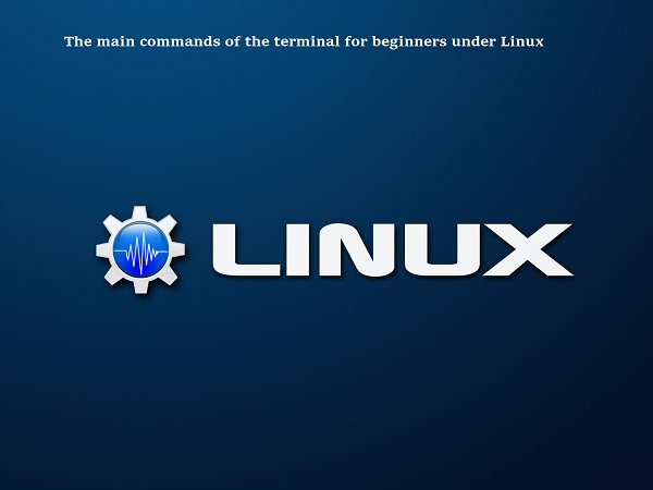 The main commands of the terminal for beginners under Linux